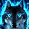 north-lander's avatar