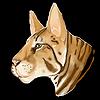 northernequidae's avatar