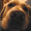 Nosedog2006's avatar