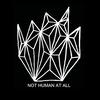 nothumanatallart's avatar
