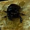 NovelOfNature's avatar
