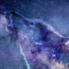 Nyamaera's avatar