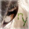 Nybling's avatar