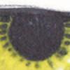 Oat0544's avatar