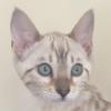 OctobersPatch's avatar