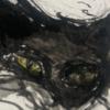 odingong1's avatar