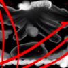 offbeattornado's avatar