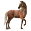 Ogilvie13's avatar