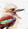 OkKookaburra's avatar