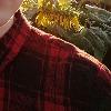 OLazyPumpkinO's avatar