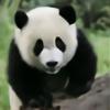oldwoman45's avatar