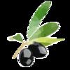 olivon6ka's avatar