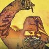 Olyy-Strange's avatar