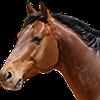 Omegacreeper's avatar