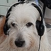 OmegaDarkness395's avatar