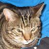 onasugarhigh's avatar