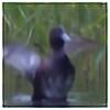 one-with-dark's avatar