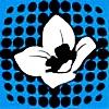 OneBloomPhotography's avatar