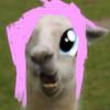 oOCanaChanOo's avatar