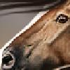 ooralea's avatar