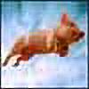 oozkr's avatar