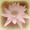 opheliareturns's avatar