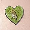 Ophiana69's avatar