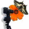 oRange-Seven's avatar