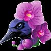 Orchi-dea's avatar