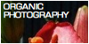 Organic-Photography