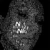 orientale's avatar