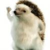 Oriqamii's avatar