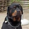 ormekurtilkat's avatar