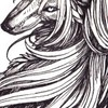 OstinLein's avatar