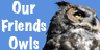 Our-friends-owls's avatar