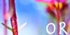 OurReality's avatar