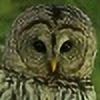 owlbird's avatar