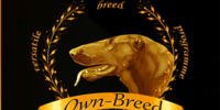 Own-breed's avatar