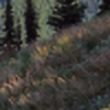 OXNI's avatar