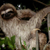 ozisl's avatar