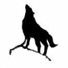 pabdoo's avatar