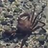 PacificMeteorite's avatar
