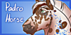 PadroHorse's avatar