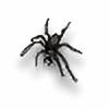 Pailei's avatar