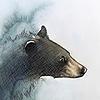 PaintedFeatherz14's avatar