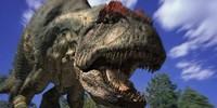 PaleoMedia's avatar