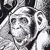 PalmerEldritch135's avatar