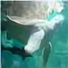 pamiekins's avatar