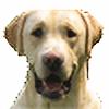 Panca21's avatar