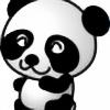 panda40's avatar